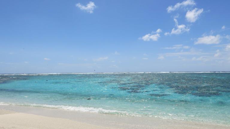 Lady Elliot Island corso individuale